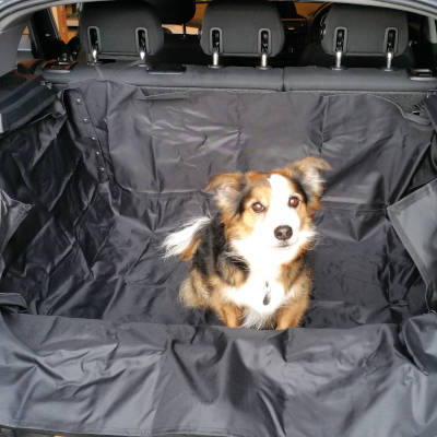 Boot Liner for Car